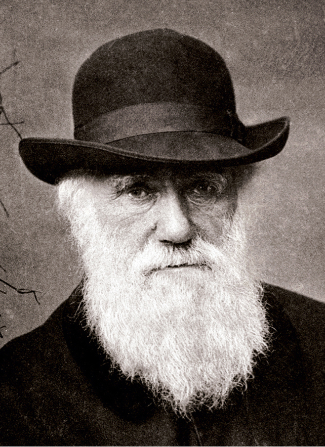 Charles Darwin: Marine inspiration for the conception of the Rosetta Stone  of biology! | EMBRC